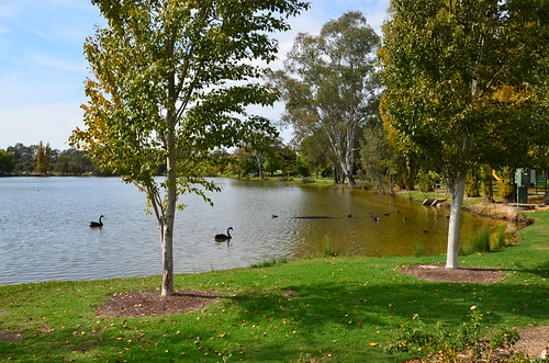 Belvoir Park 04