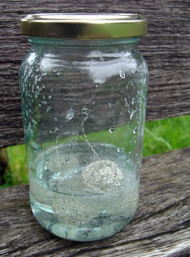 Jar No 363