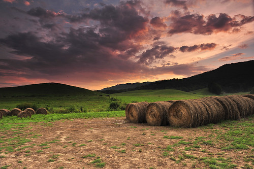 sunset tn country pasture hay easttennessee roundbales graduatedneutraldensityfilter singhray reversend