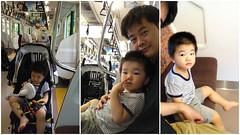 帰路とらちゃん (2012/7/17)