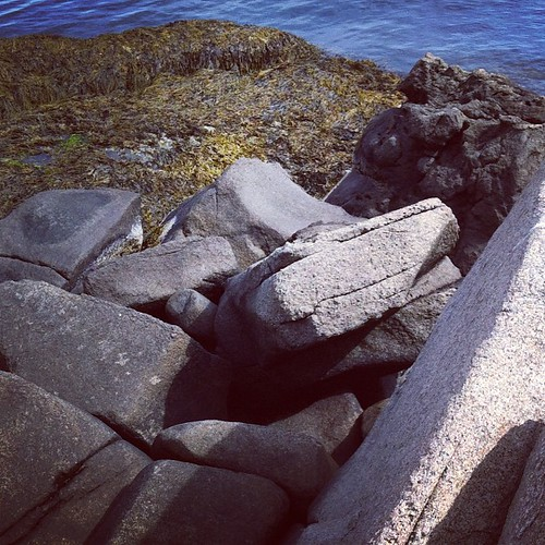 granite and rock weed on the Maine coast #maine #morning #nubblelight