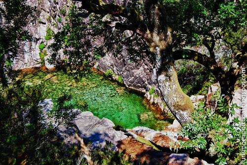Rio-Homem-Parque-Nacional-da-Penda-Geres