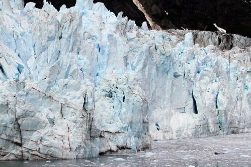 Glacier Bay - Margerie Glacier, Looking Bluer