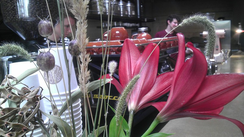 morning sightglass cafecito: flowers, great coffee y a pretty barista