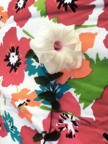flower copy