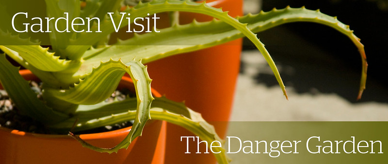 Danger Garden Header