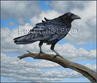 Raven with a Breeze
