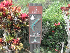 Makaha Valley Country Club 046