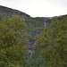 Birch with waterfall from mountains by Jan Norman B