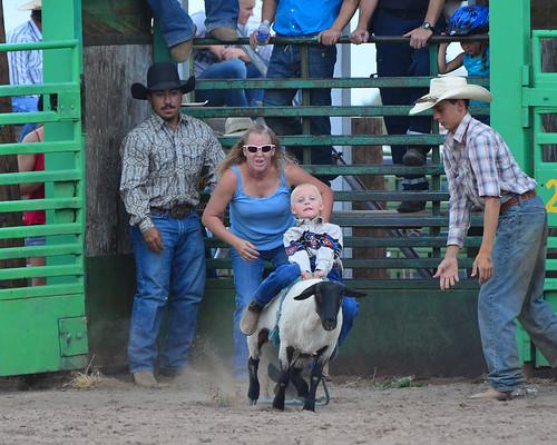 mutton busting weird sport