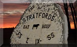 Stratford Angus