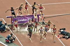 racing, athletics, track and field athletics, sport venue, sports, running, race track, athlete,