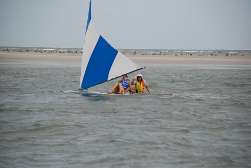 The Dog Days Of Summer on Tybee Island's Back River
