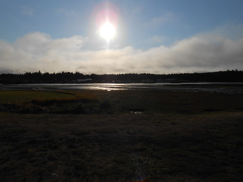 Coos Bay site 2