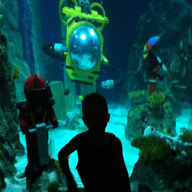 A little silhouette of the kid @Legoland SeaLife Aquarium. Thanks to @klout for the perk!