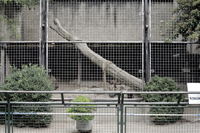 Jaguar Enclosure