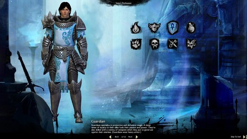 Guild Wars 2 Guardian Builds Guide - Dungeons, PvE, PvP and WvW