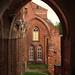 Catedral de Tartu by miquelopezgarcia