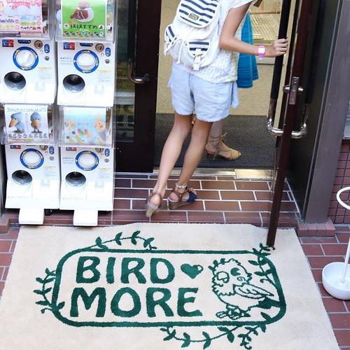 鳥グッズの専門店。 #birdmore