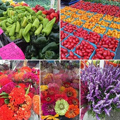 Such pretty colors at the farmer's market