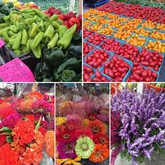 Such pretty colors at the farmer's market