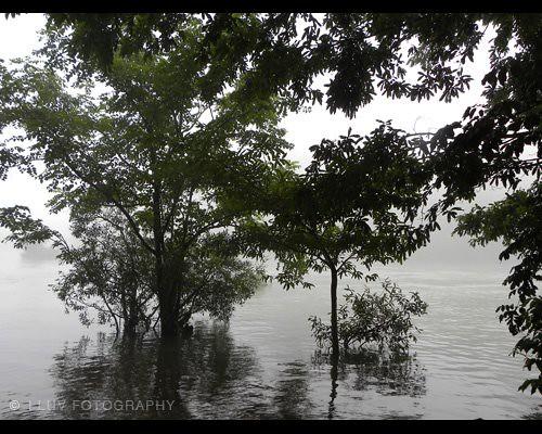 Dandeli India  City pictures : Dandeli, KA, India | Flickr Photo Sharing!