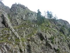 Vire de l'Andadonna : la descente de la partie 3 de la vire sous la plate-forme de l'arête où nous avons déjeuné