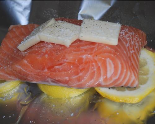 salmoninabag