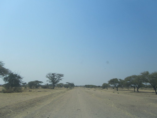 The road out into the bush