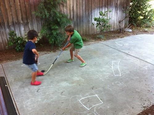 Driveway hockey