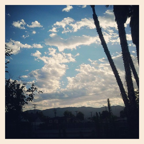 Morning L.A. Sky by Jodi K.