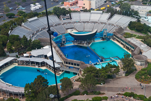 Shamu Stadium from SkyTower
