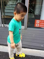 朝散歩 とらちゃん (2012/8/3)