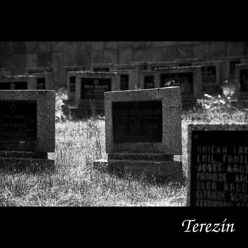 Terezín graveyard
