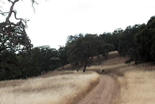 Henry Coe State Park (25)