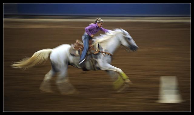 0728_ABFE_4H_HorseShow0104