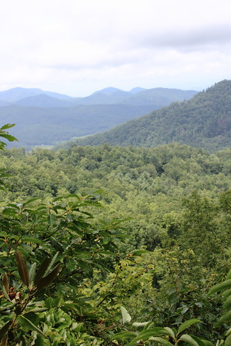 View from Cowee Overlook