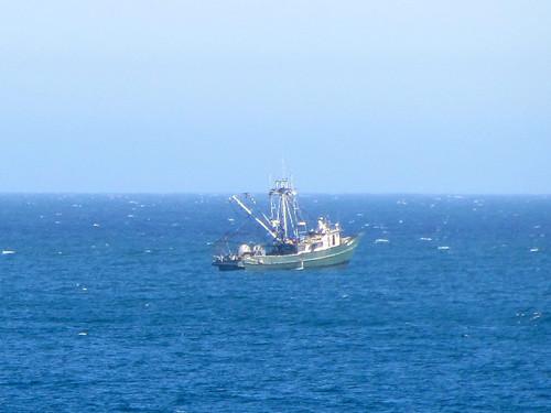 Monterey Bay Aquarium boat