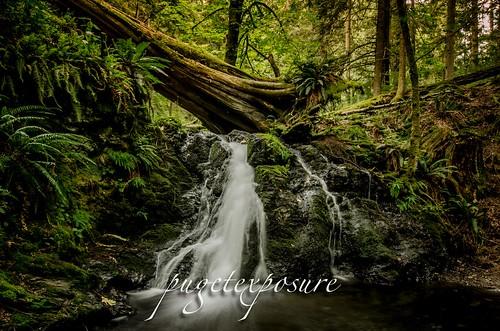 Rustic Falls, Cascade Creek, Moran State Park