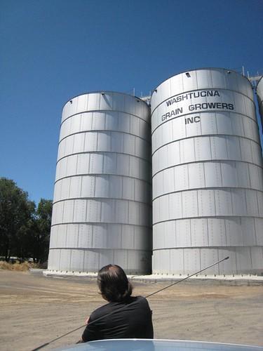Grain elevators at Washtucna