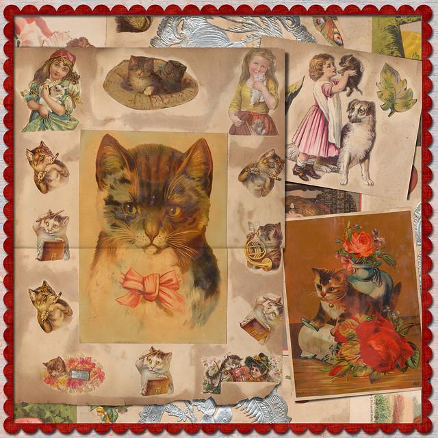 Victorian Friday Cat Blogging
