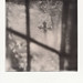 Cross on PX 100 Testbatch by heinisch