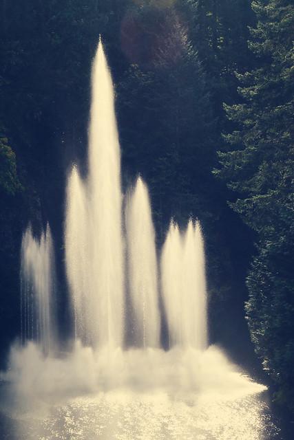 ross fountain
