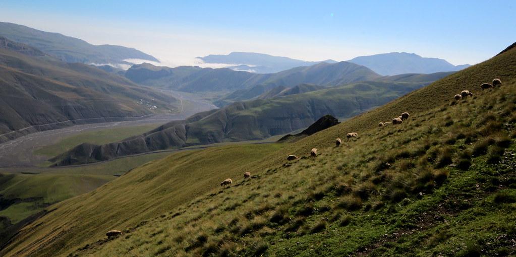 High-ish Pasture