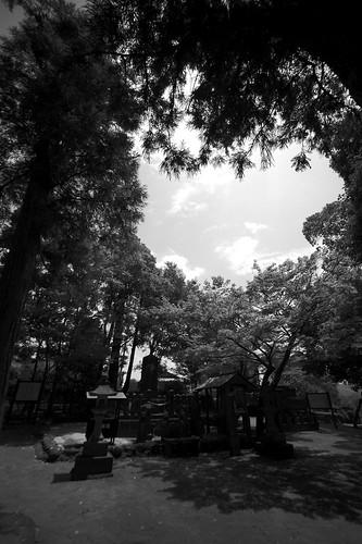 2012夏日大作戰 - 熊本 - 武蔵塚公園 (12)