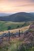 Moel Arthur View