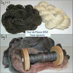 Tour de Fleece, days 3-5