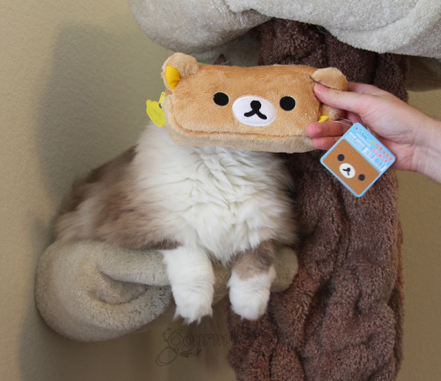 Rilakkuma Pencil Case and Tyco