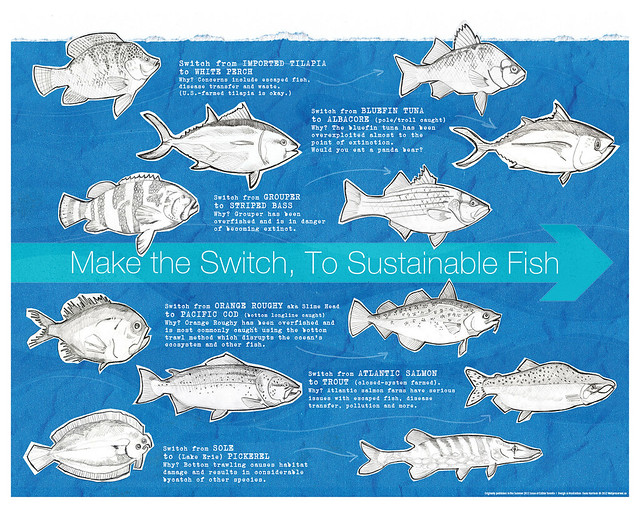 Fish friday what is sustainable fish wellpreserved for Most sustainable fish