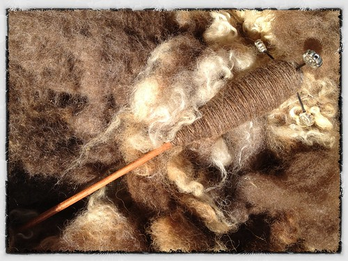 lastly, the reddish brown fleece